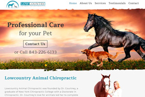 Lowcountry Animal Chiropractic